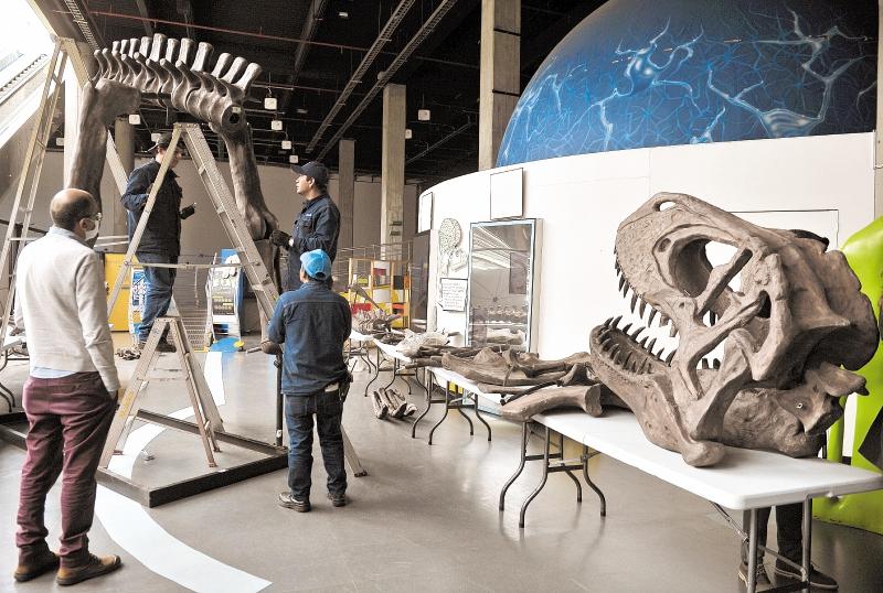 dinosaurio Maloca