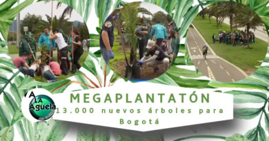 MegaPlantatón 13.000 nuevos árboles para Bogotá