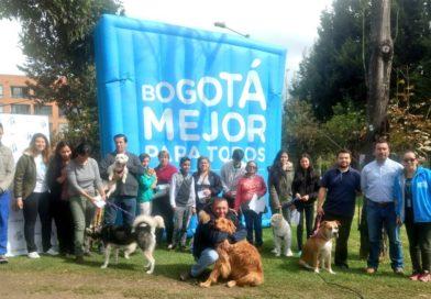 Bogotá Zoolodaria – Limpiatón en la localidad de Suba