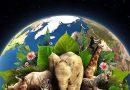 Día de la Tierra 2020 en medio de la pandemia: sé bueno con el medio ambiente y contigo mismo